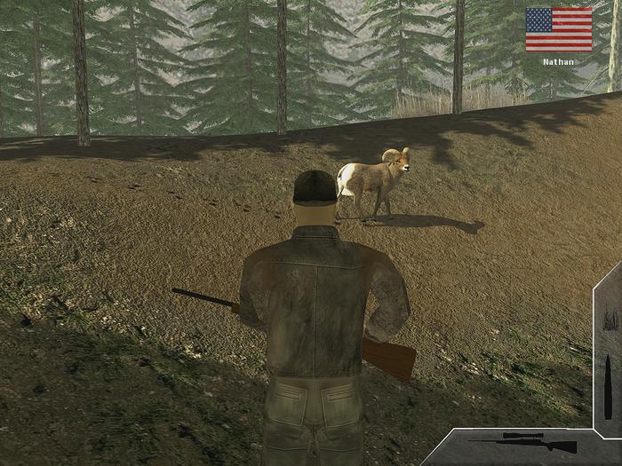 World hunter free download.
